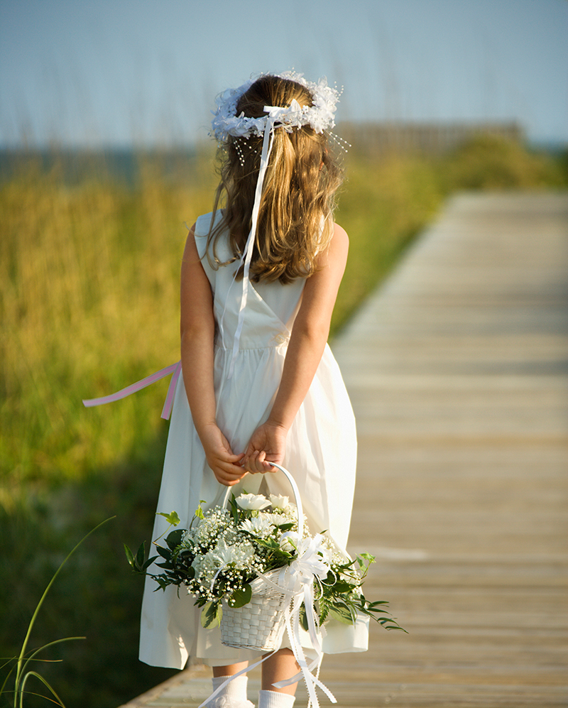 Do It Yourself Wedding Gown Preservation: Bridal Suite Of Centereach